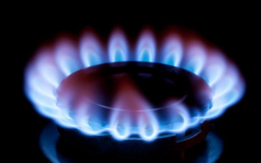 A small provider has ended Octopus' two year reign at the top of Which's annual survey of energy companies.