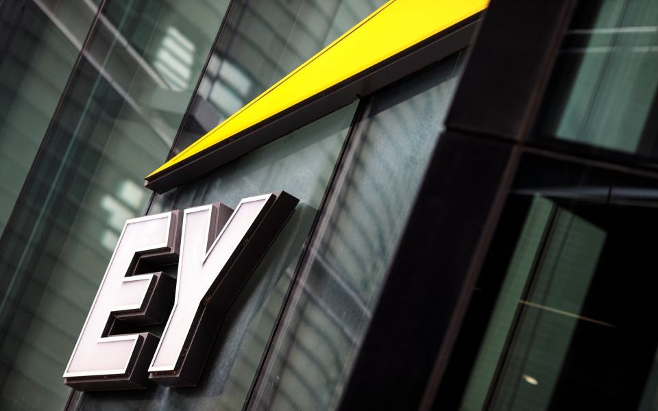 EY and PwC reveal that both dismissed five partners over