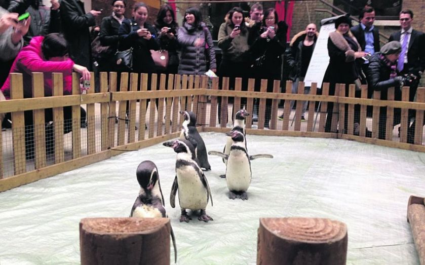 The John Lewis Monty effect? Devonshire Square p-p-p-picks up a penguin for one day only