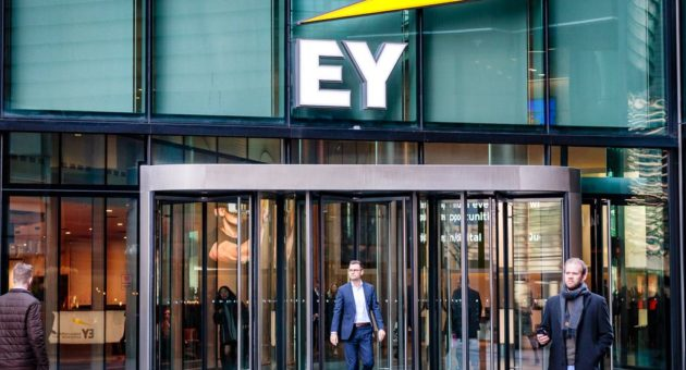 Exclusive: EY is planning a major private equity push