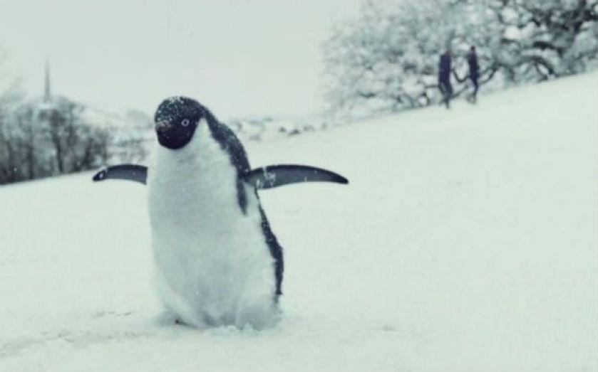 John Lewis Christmas Advert 2019.John Lewis Christmas Advert 2014 Monty The Penguin Gets 2 5