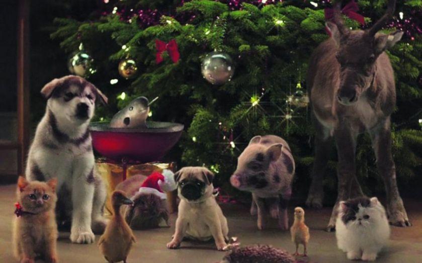 2014 Christmas advert complaints: McVities' animal cuties join Sainsbury's, Halfords and John Lewis