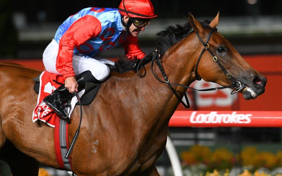 Ladbrokes-owner GVC increases gambling revenue in first quarter