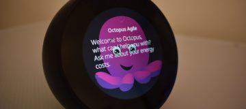 octopus-energy