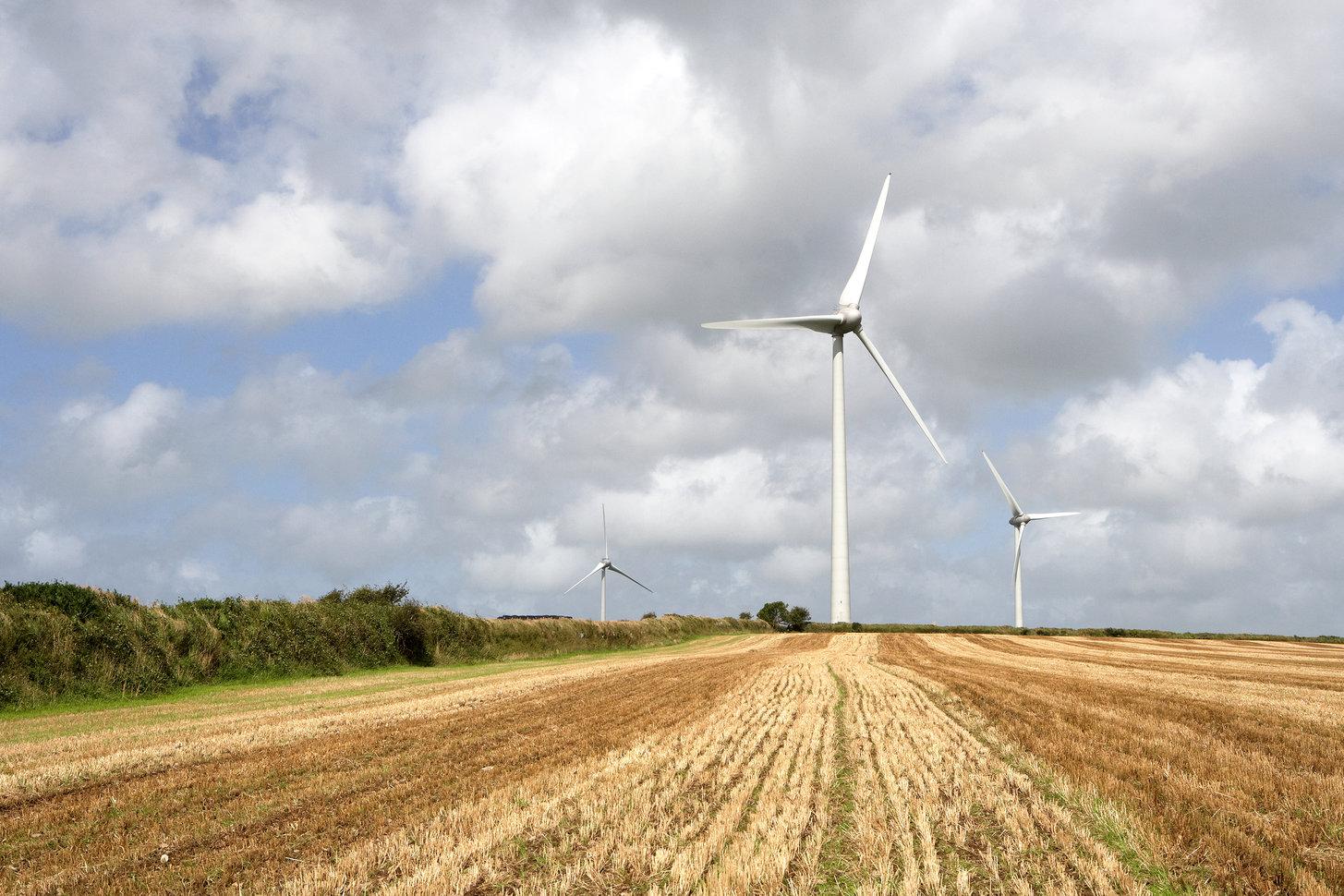 NEX Exchange Profile: Good Energy Group plc