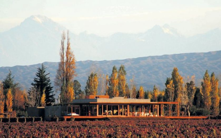 Discovering The Entrepreneurial Spirit Behind Argentine Wine