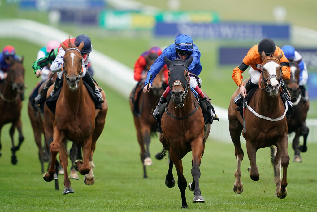 HORSE RACING BETTING TIPS: TAKE SOME TIME TO STUDY THE PLATE AND YOU'LL BE BACKING PROSCHEMA