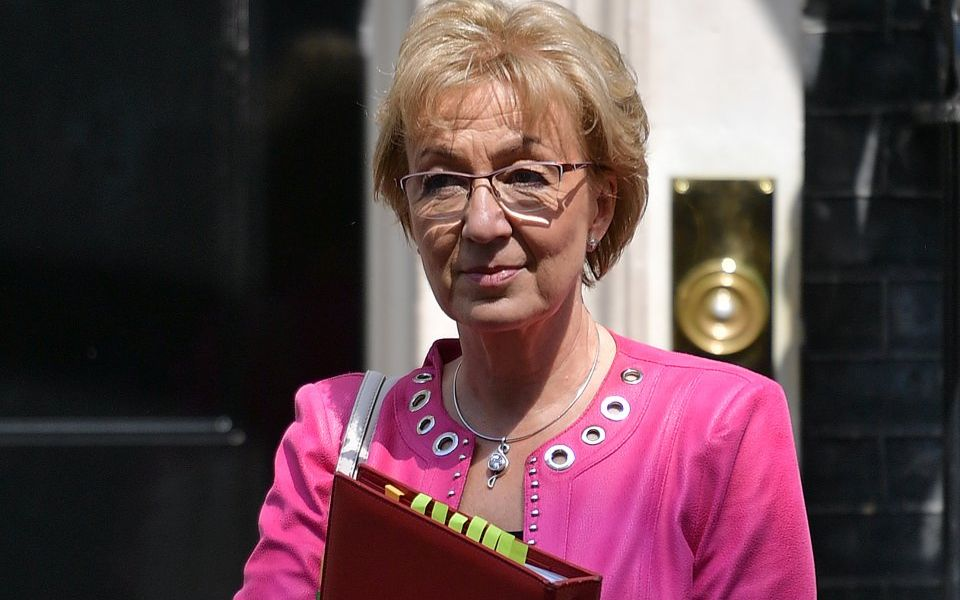 Andrea Leadsom quits Cabinet with stinging attack on Theresa May's Brexit plan