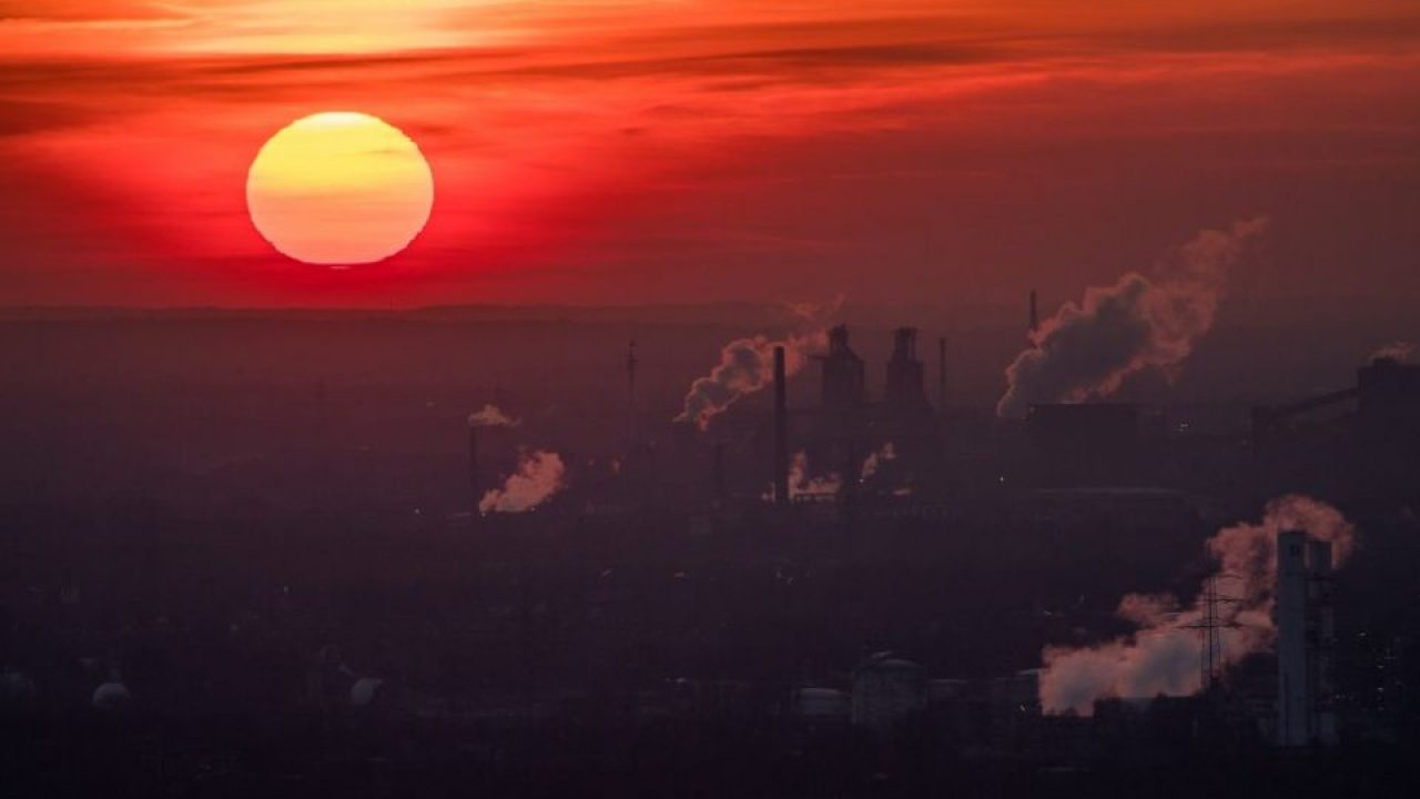 Carbon Scams and Lies