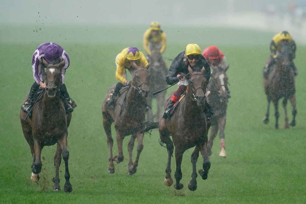 Horse Racing Betting Tips: Ocean's odds of turning the tide