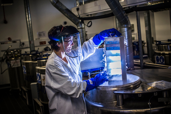 No-deal Brexit a 'threat' to UK's science sector, says Wellcome Trust