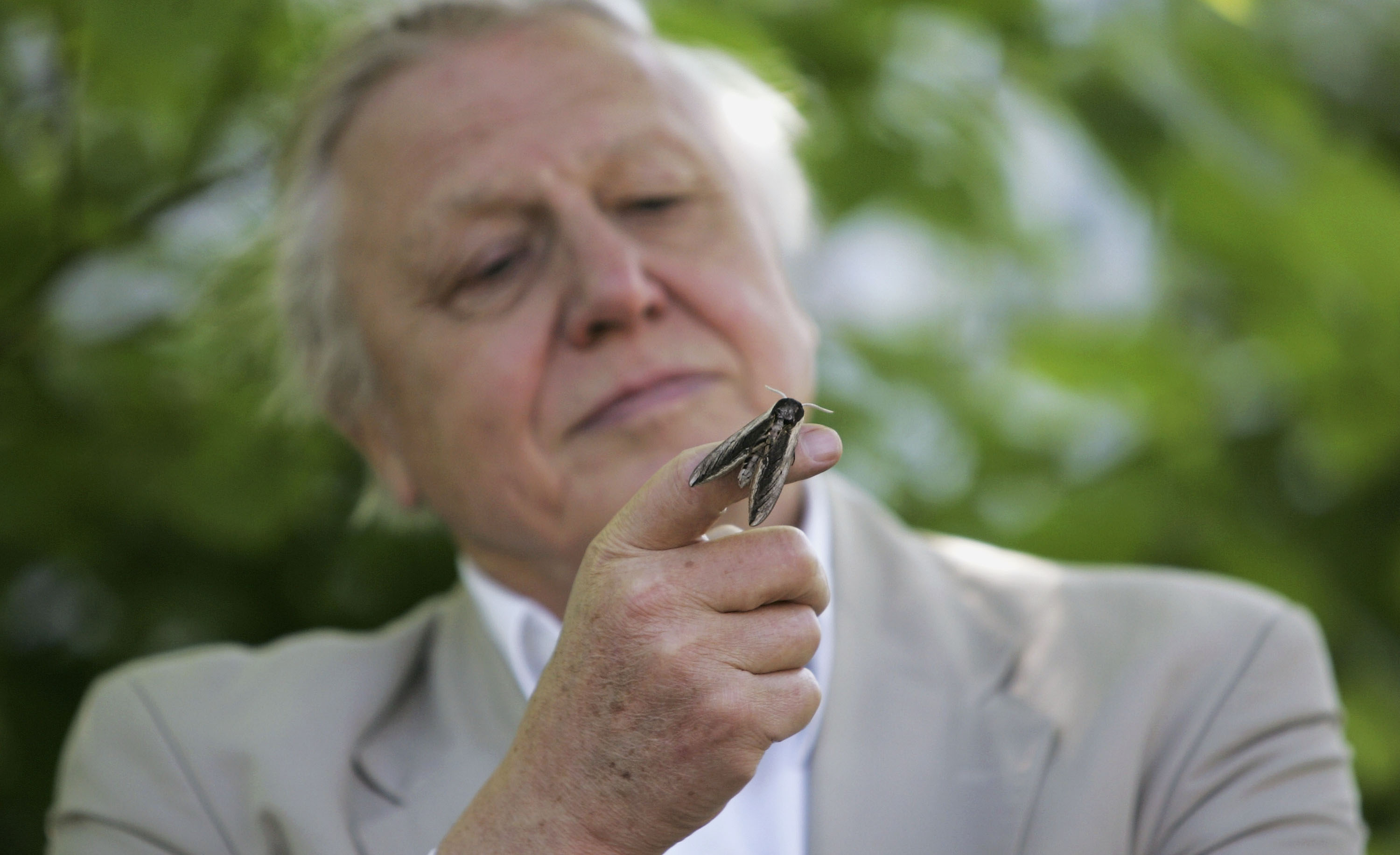 David Attenborough and the Queen remain British public's most admired figures
