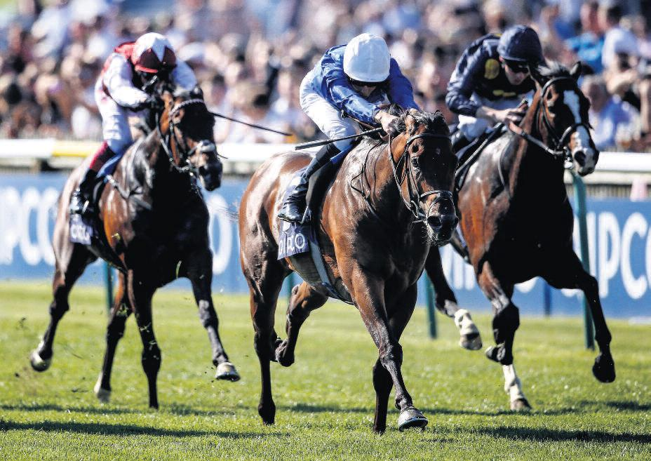 Horse Racing Betting Tips: Key can rise to Coral Challenge and carry top weight to Victory