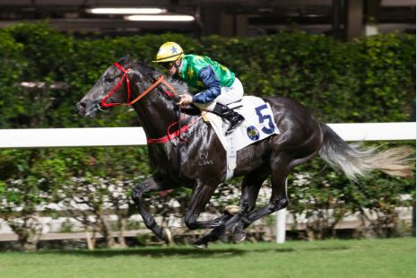 Hong Kong horse racing betting tips: Purton and Lor are the Valley's Reliable Team