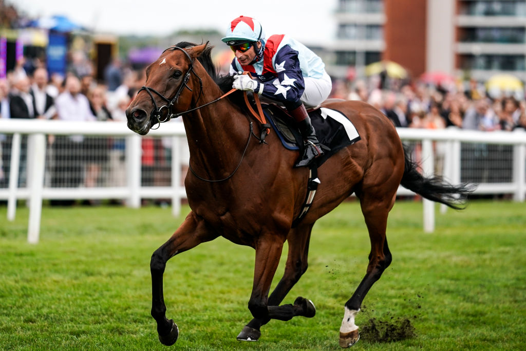 Horse Racing Betting Tips: Quicker conditions on the Knavesmire will suit you Sir