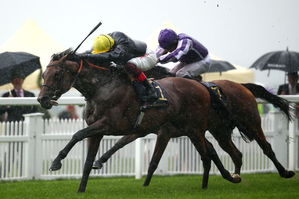 Horse Racing Betting Tips: Crystal Ocean can leave rivals toiling in his wake