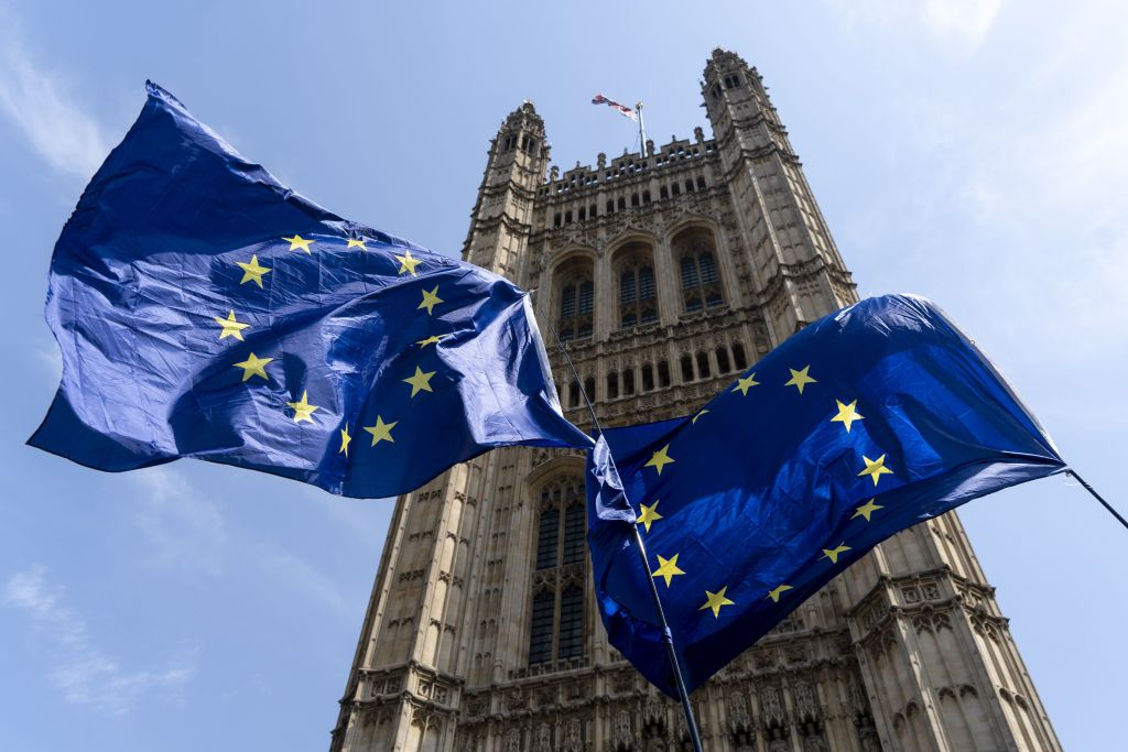 Time running out for Remainer MPs to stop no deal Brexit: IfG