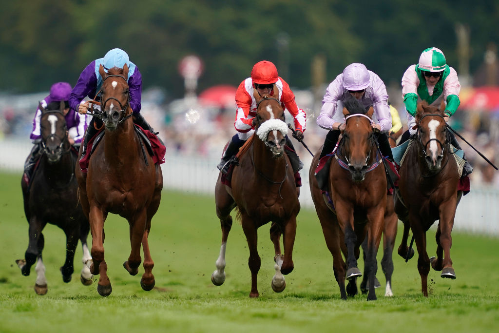 Horse Racing Betting Tips: Hills to land third Acomb with a little bit of Persuasion