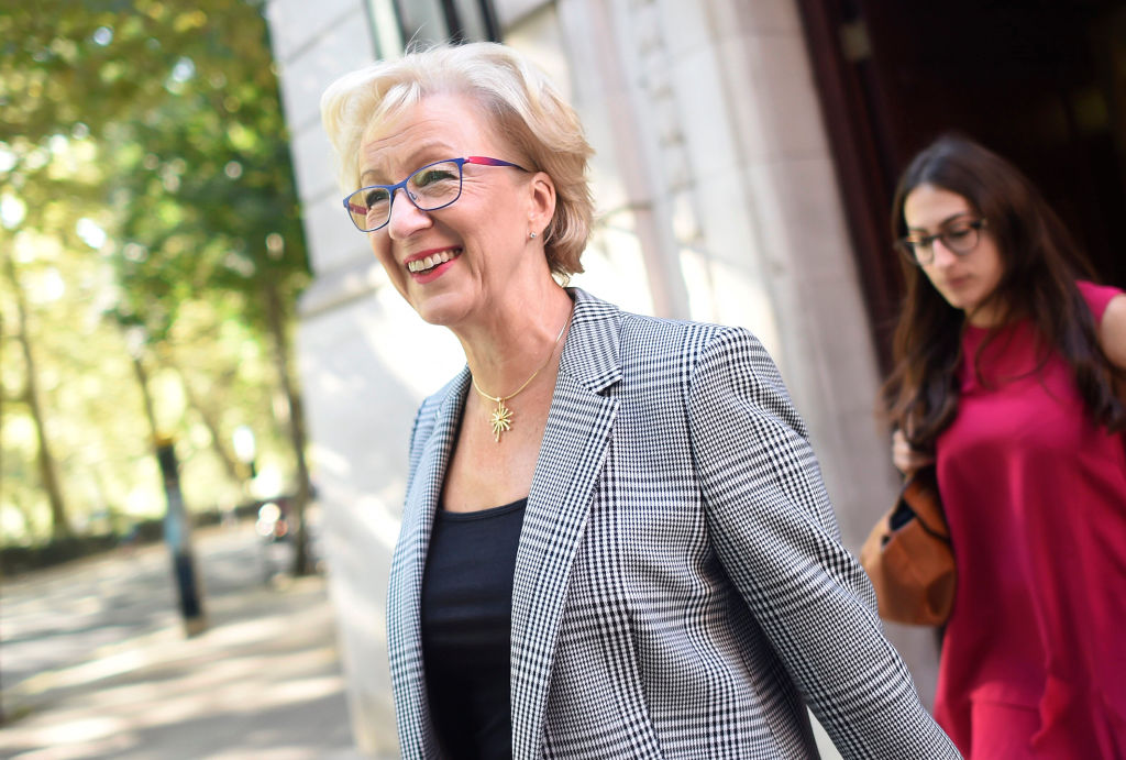 Leadsom: Yellowhammer doc would 'just serve to concern people' on Brexit