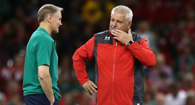 Gatland and Schmidt, two of rugby's finest, seek perfect World Cup send-off