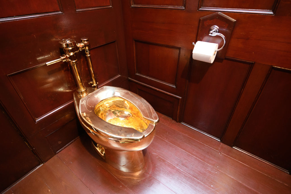 Man bailed as police hunt for stolen gold toilet