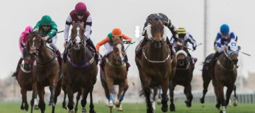 Horse Racing Betting Tips: Intisaab looks the value alternative to Buffer Zone