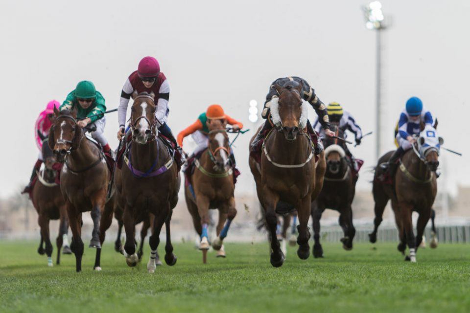 Betting zone horse tipster matmos sounds 1-3 2-4 betting system