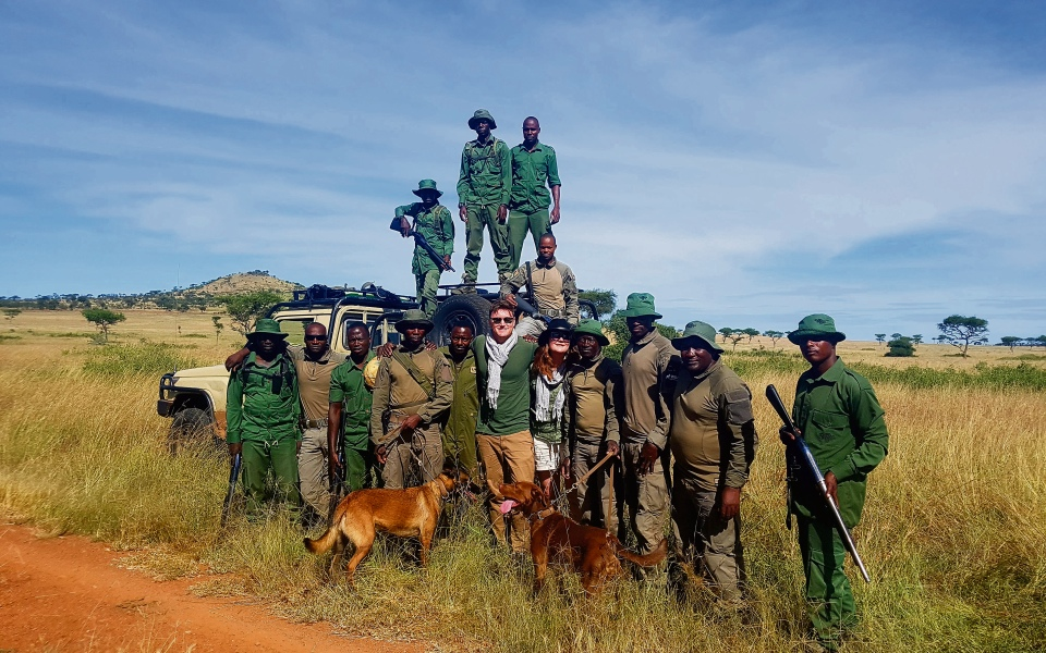 Hunting the hunters: We go on safari with the Serengeti's canine anti-poaching unit