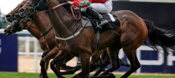 Horse Racing Betting Tips: Course form points to Coulis and Escobar in Balmoral