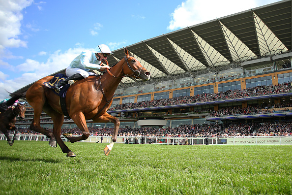Horse Racing Betting Tips: The Revenant to produce an Oscar-winning performance - CityAM