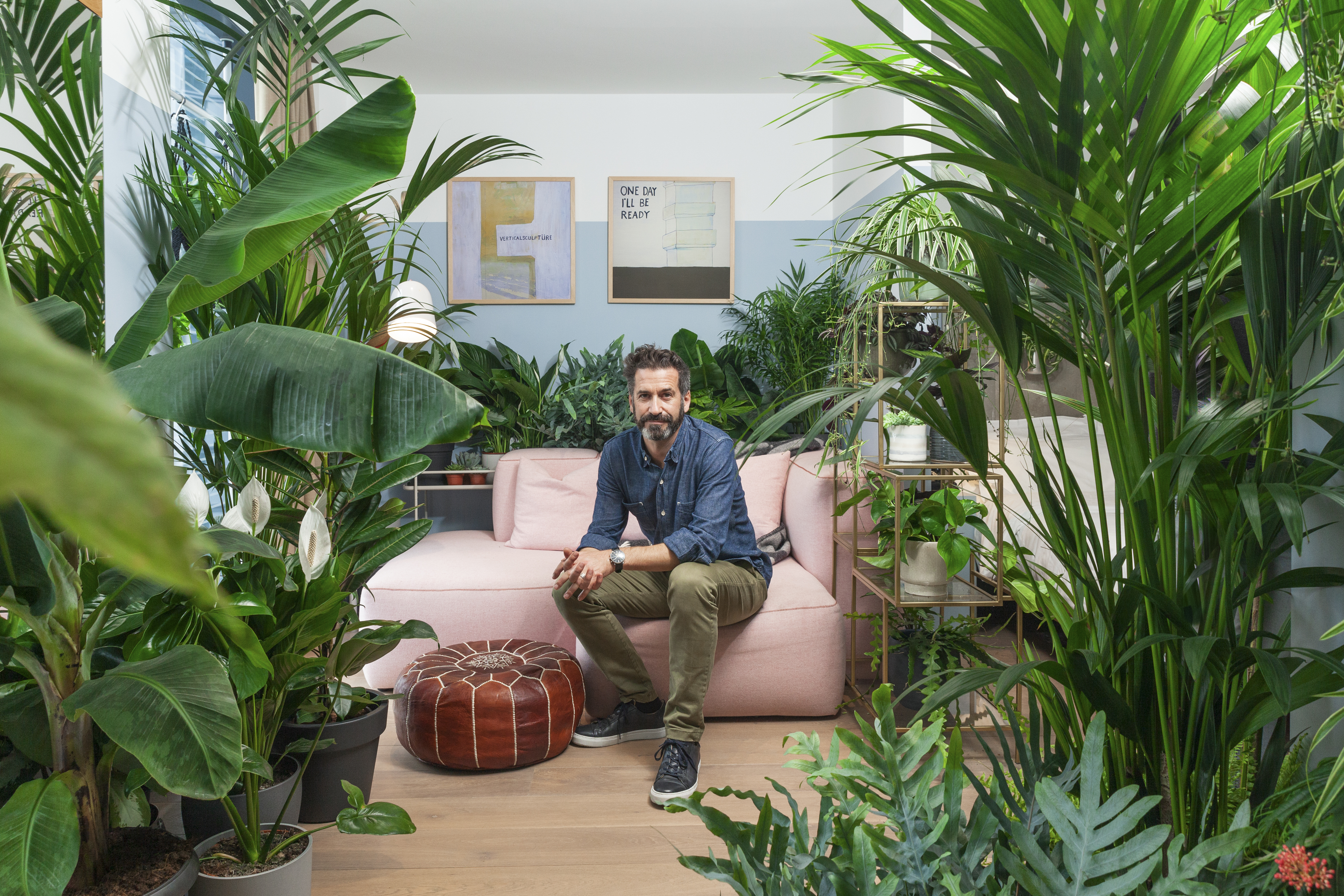 'Houseplant hotel suites' showcase greenery that can make us feel calm, loved-up or more productive