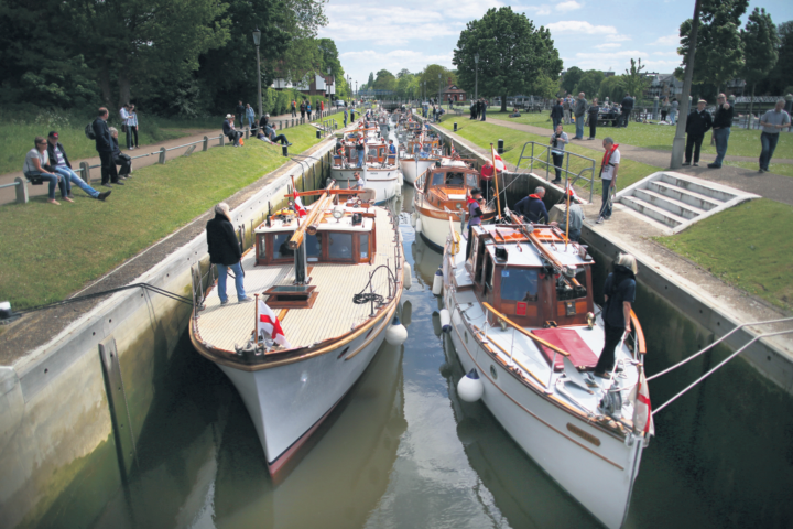 Focus on Teddington: This laid-back suburb is home to families, first-time buyers – and the odd seal
