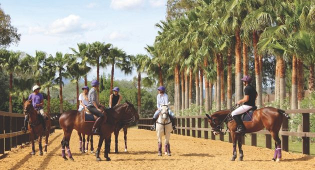 At Polo Valley, a converted farm house in Sotogrande, you can try your hand at one of the oldest team sports in the world