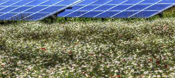 Future looks bright for NextEnergy Solar Fund