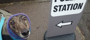 In pictures: Dogs at polling stations across the UK