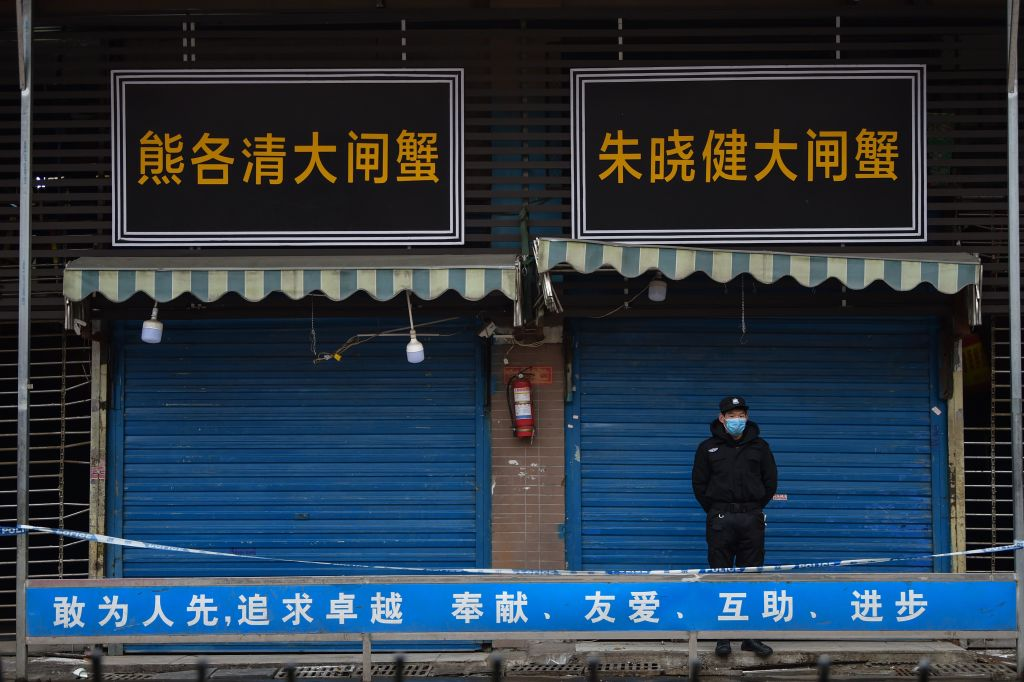 The new strain of coronavirus started at the Huanan Seafood Wholesale Market