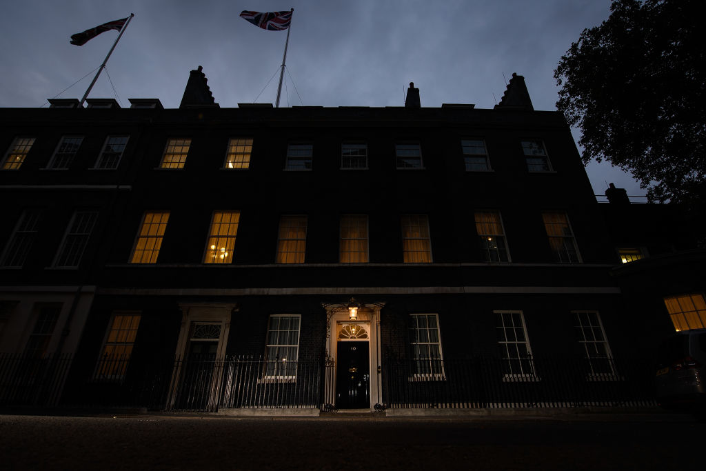 Downing Street will hold a lights display on 31 January