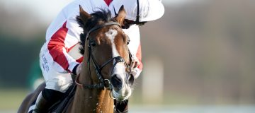 Horse Racing Betting Tips:Good Gosh this horse could be very special in Triumph Hurdle
