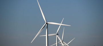 The growth in new renewable energy capacity will slow for the first time in two decades, the International Energy Agency (IEA) has found