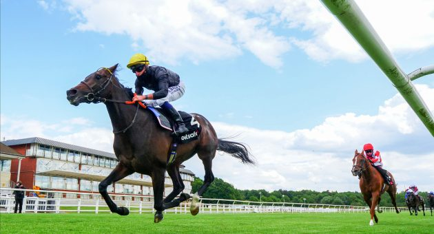 Ed Walker updates on leading Investec Derby contender English King
