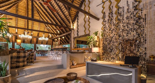 Reconnecting with nature at a private safari lodge in South Africa