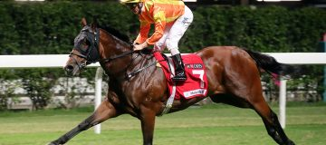 Hong Kong Racing Tips: High Rev could find the Winning feeling again