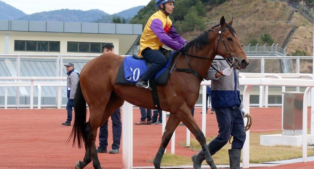 Hong Kong Racing Tips: Harvest to mow down Valley rivals