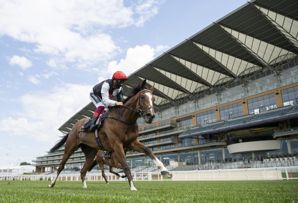 Frankie can be the Darling of Epsom again - CityAM