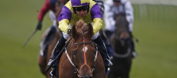 Brando looks a Threat to all in the July Cup at whopping 25/1