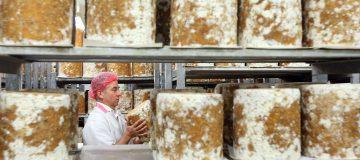 Cropwell Bishop Creamery Prepare Stilton For Christmas