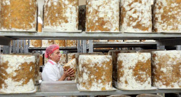 UK-Japan trade deal talks stall over Stilton cheese