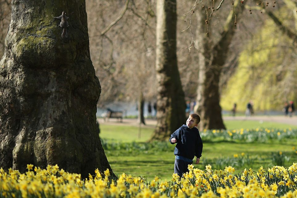 Spring Emerges In London