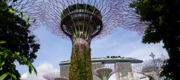 Travellers Checking In At Changi Airport As Hong Kong And Singapore Announce Travel Bubble