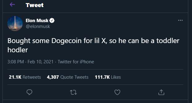 Elon Musk Doge tweet